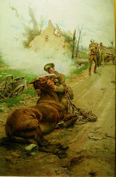 Horses in war, war horse, horses world war 1, horses world war 2, dumb heroes, Riding into War, The Horse in War, my horse warrier, the war illustrated